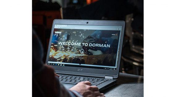 Dorman-training